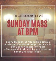 Mass Livestream