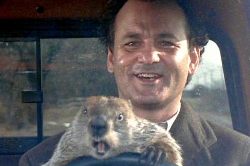 Groundhog Day: Is Punxsutawney Phil right?