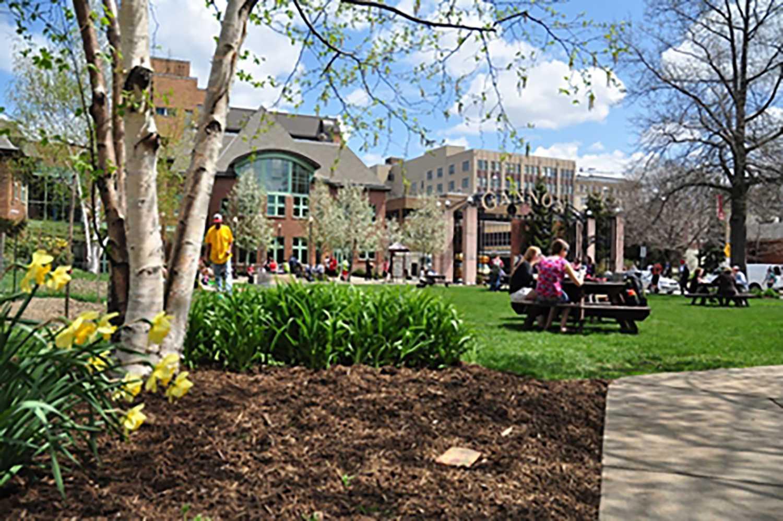 Gannon University named National Catholic College of Distinction