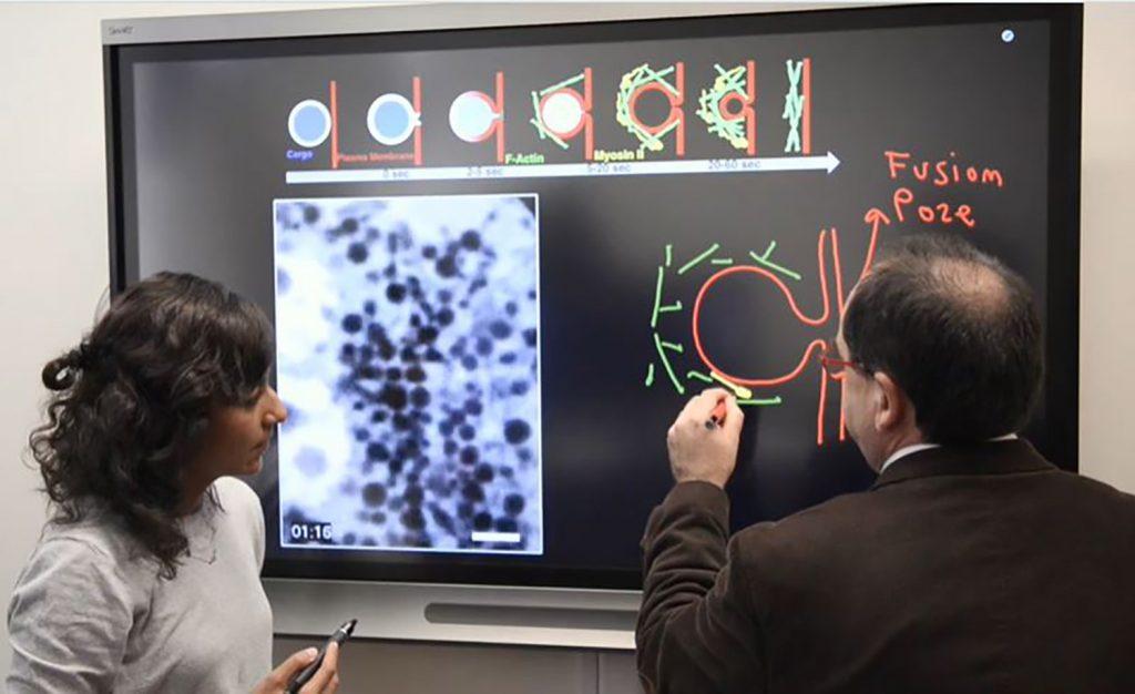 Biology+professor+produces+film+for+Celldance