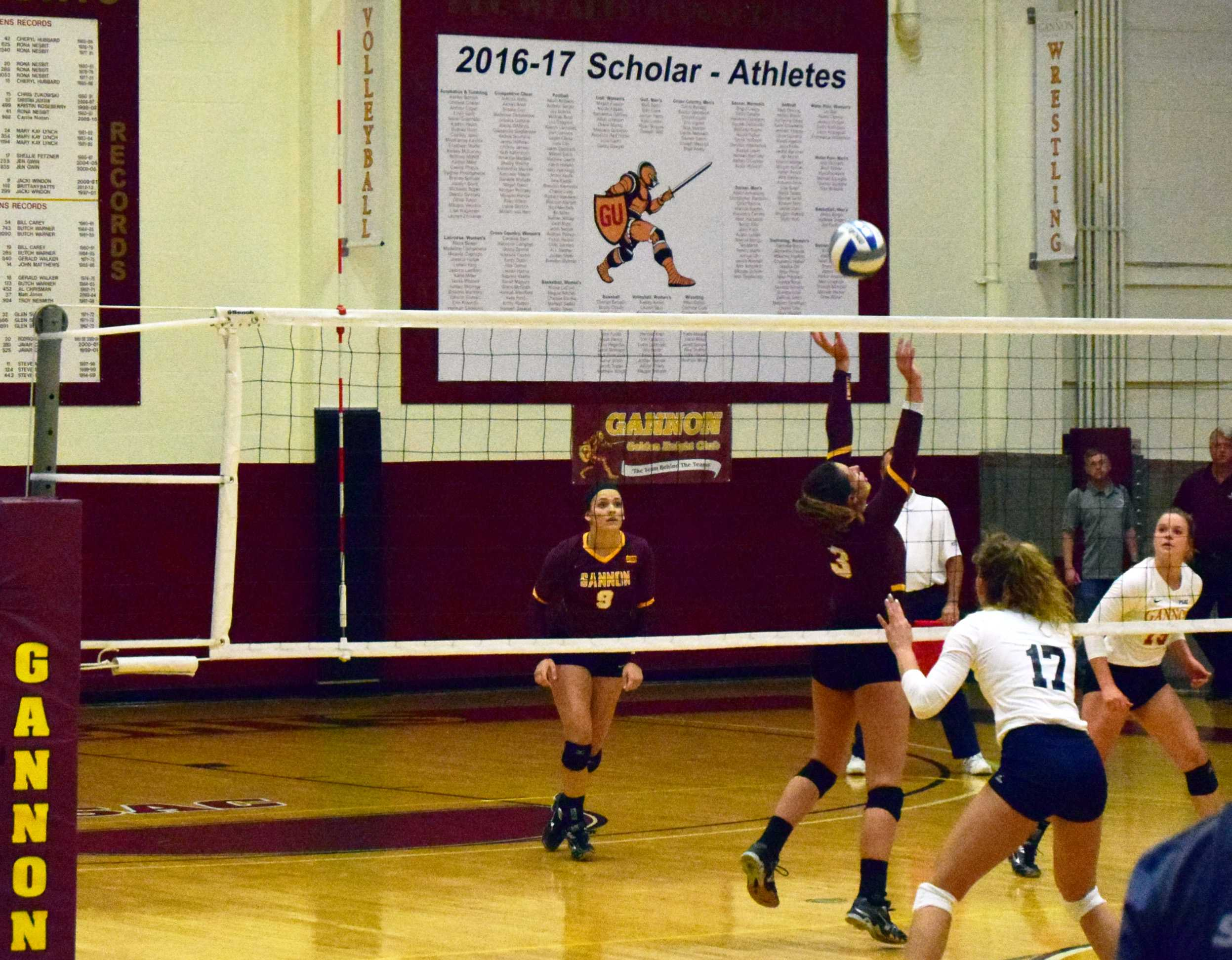 Volleyball goes 3-1 at Gannon-Mercyhurst Invitational