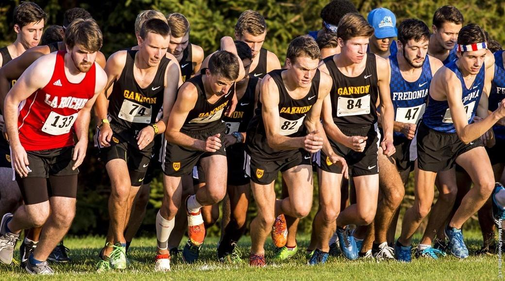 Cross country teams light up the trails in first three meets