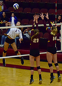Volleyball's eight-game win streak comes to an end
