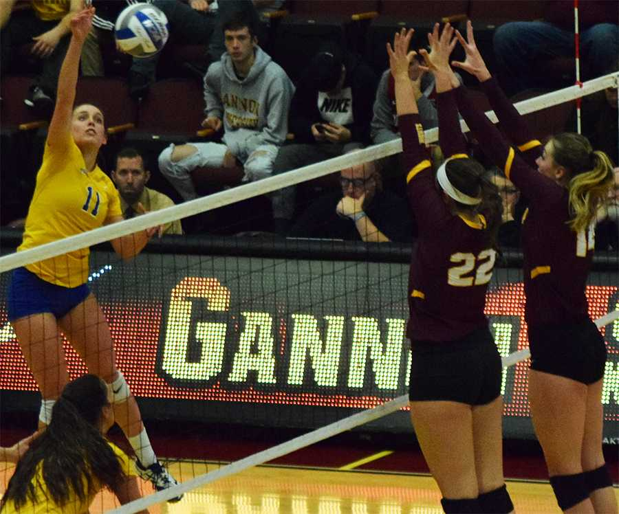 Volleyball earns berth to NCAA Tournament