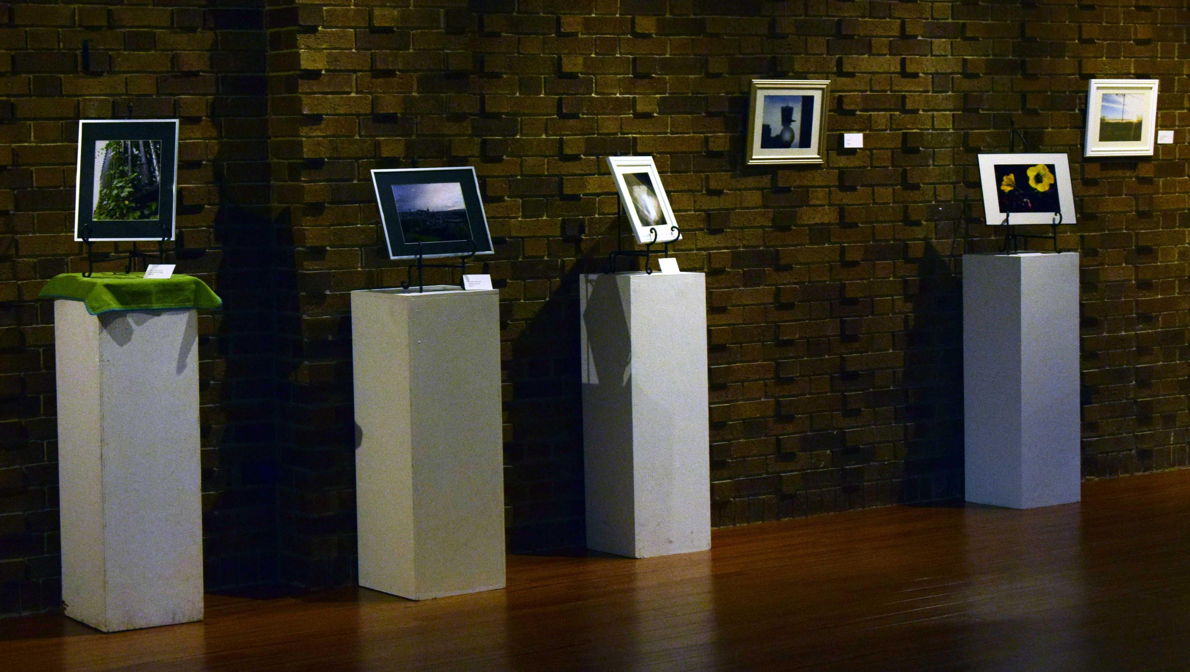 Schuster Gallery displays photos