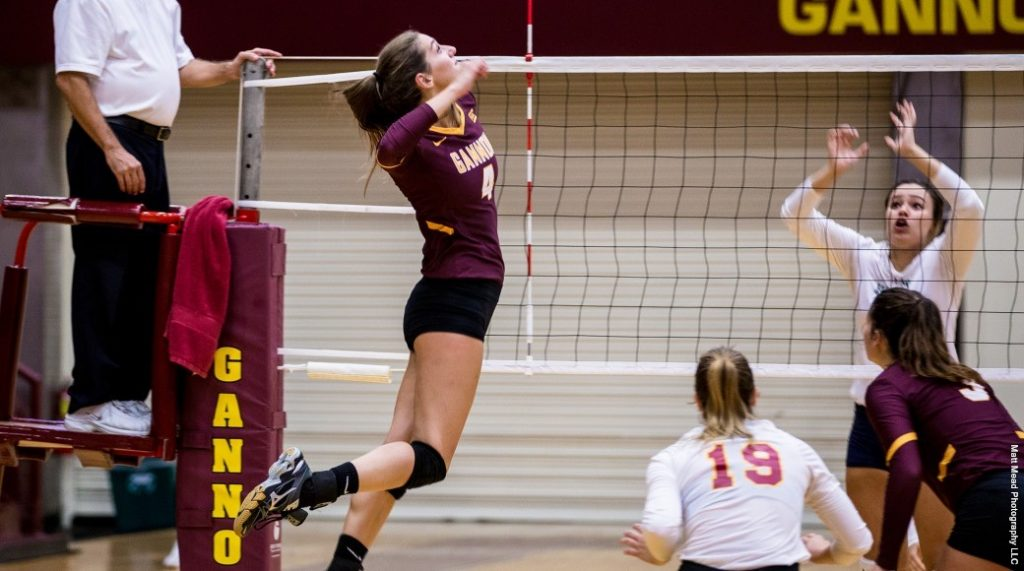 Volleyball seizes PSAC Northwest Division