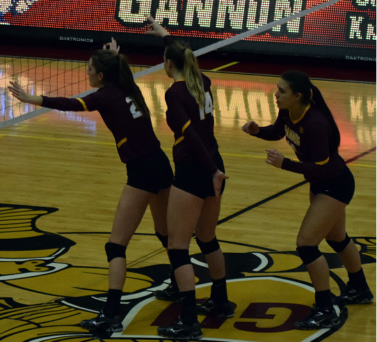 Volleyball concludes historic season in NCAA Semifinals