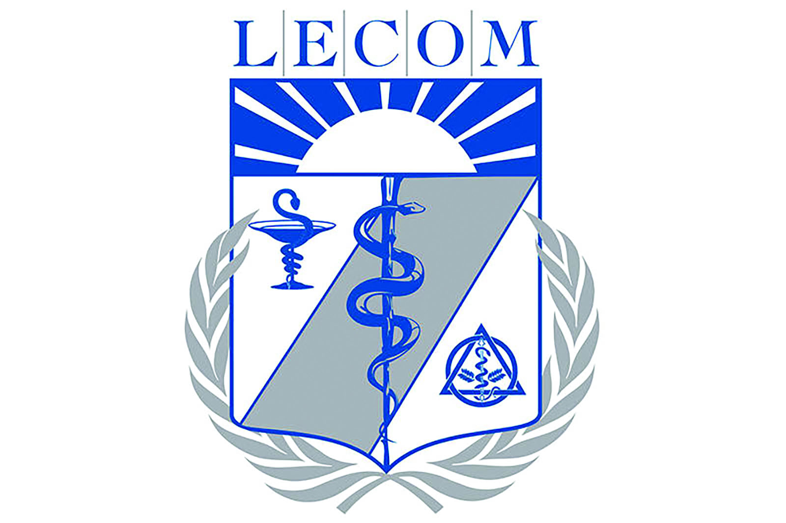 OT students welcome wellness at LECOM