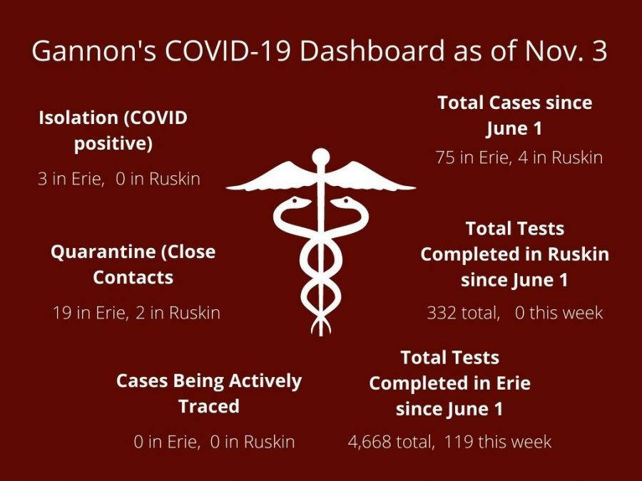 Gannon's COVID-19 Dashboard shows students and faculty the coronavirus statistics for each campus and is updated daily.