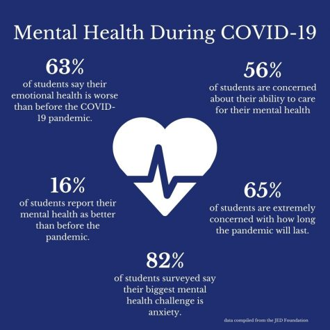 Mental health issues are hard to deal with for students without a global pandemic. With COVID-19, students are facing these issues at a higher rate than under normal circumstances. Awareness and aid are crucial during this time, which is why Jill Merritt, Ph.D., and Renee Foradori are offering the Youth Mental Health First Aid Program for faculty and staff at Gannon.