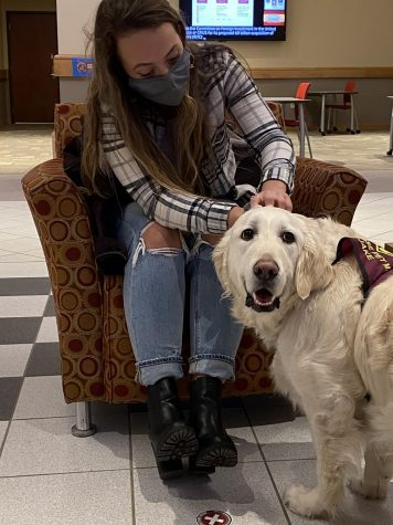 Chloe Forbes/Knight Gannon University is working  to expand mental health services on campus.