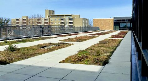 The Nash Library green roof was part of the renovations on the building that started in 2016. The roof was added to enhance the sustainability of the building