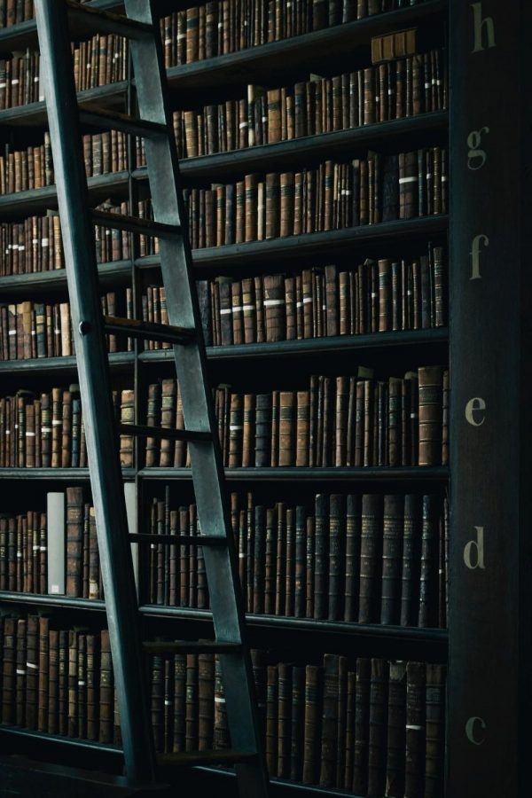 Do trigger warnings have a place in literature?